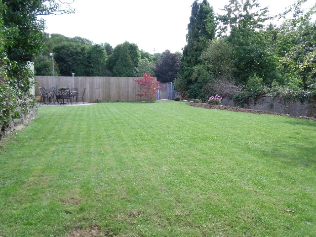 Lawn After Landscaping Work.