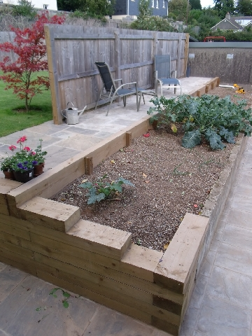 Raised Vegatable Planter.